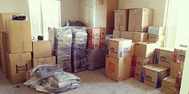 professional movers florida